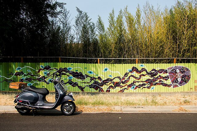 Today 480 - Rode my scooter into the neighboring small city of Ashland, Oregon - where one street in a residential neighborhood is known for a number of inventive murals, painted by local artists, on fences.  This particular one - a new-age Medusa? - was my favorite.