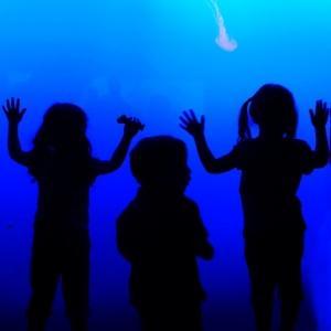 New York Aquarium with our children