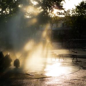Park Morning Light