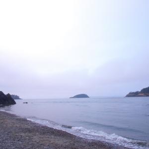 Beachcombing, Whidby Island