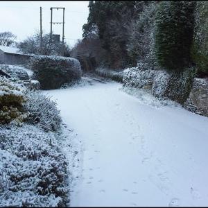 Winter finally arrives in south Devon (02/12/10)