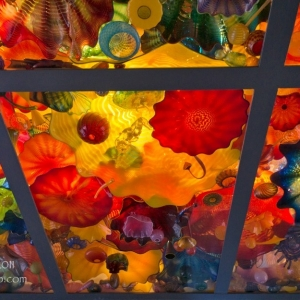 Glass ceiling, San Antonio Museum of Art