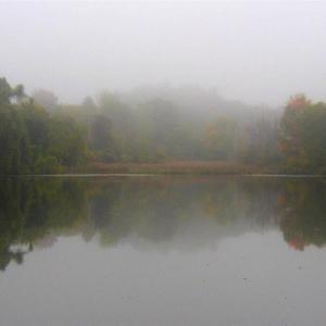 fall_2009_004-2_Medium_1