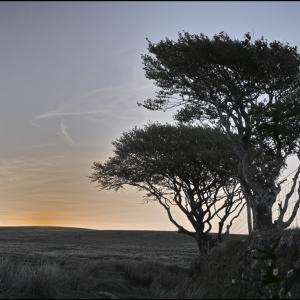 Sunrise on Dartmoor