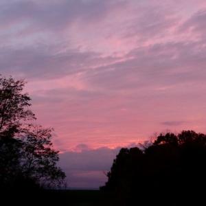 FX200_Frear_Sunset_004_Medium_