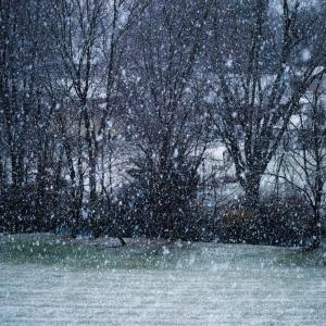 mini blizzard dec 2014