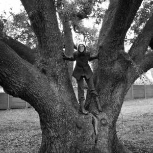 SIJ-01 The Freedom Tree