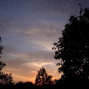 SIJ6 ~ local sunrise