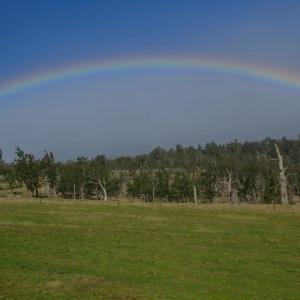 09 July - Rainbow
