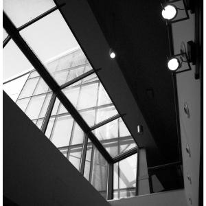 Jan 2 - Looking Up