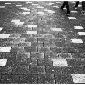 Jan 3 - Looking Down