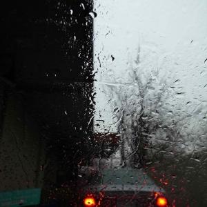 sij day 10 rain