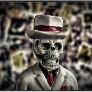SIJ day 10- Mr Voodoo