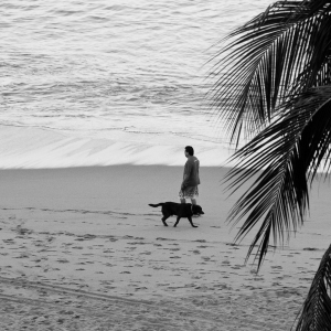 SIJ Day 16 - Walking the dog backwards