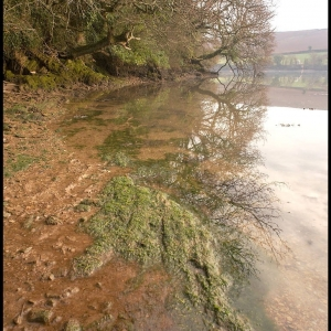 High Tide, Frogmore Creek