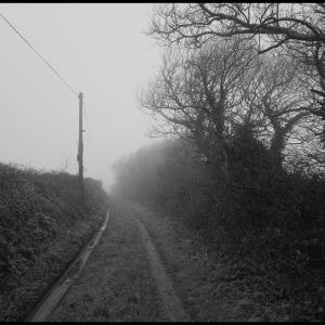 SIJ - Day 18   Into the mist