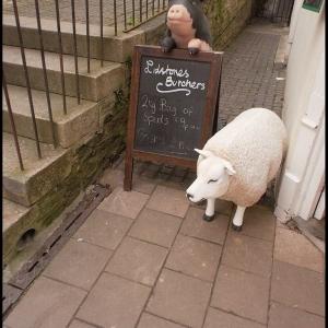 Butchers shop advertising