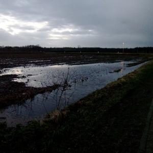 SIJ 22 - inundated
