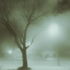 SiJ Day#26 - a foggy morning
