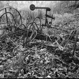 SIJ - Day 29  Derelict farm machinery
