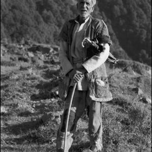 Himalayan Herdsman