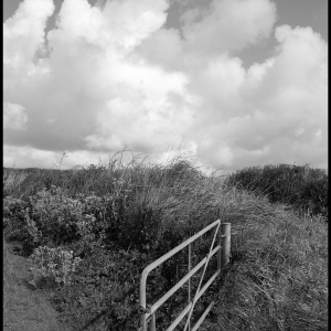 Cloud and gate