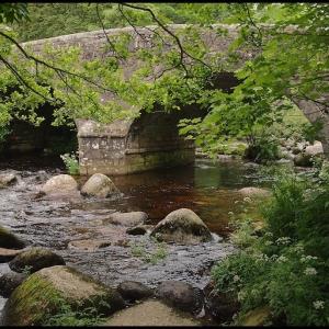 East Dart River and bridge