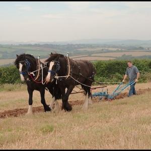 A team ploughing