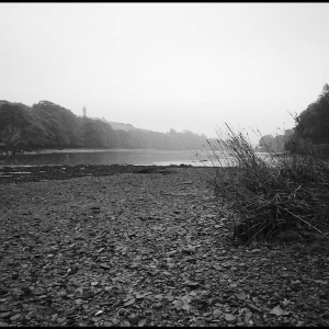 Bowcombe Creek, incoming tide on a misty morning