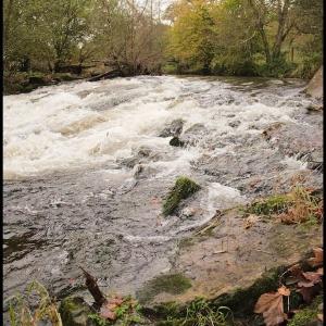 Water, both calm and turbid