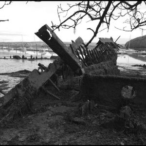 The wreck under the trees