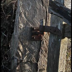 hinge pin and gatepost