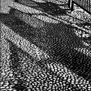 Shadowplay-2