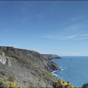 Early spring on the south Devon coast