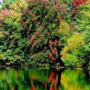 Cooper_s_pond_006-3_Medium_