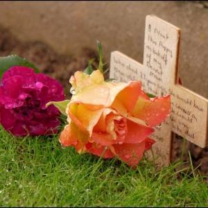 Remebrance tributes