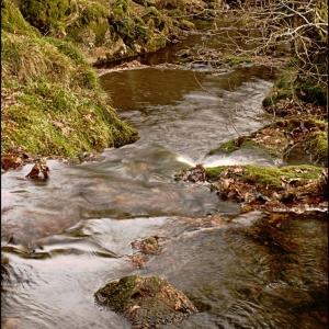 The Scad Brook descends to the Glaze Brook