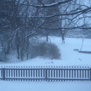 D550_snow_001_Medium_