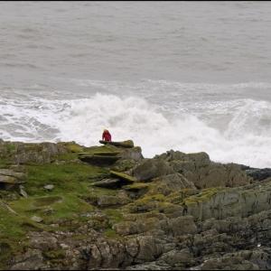 A lone searcher