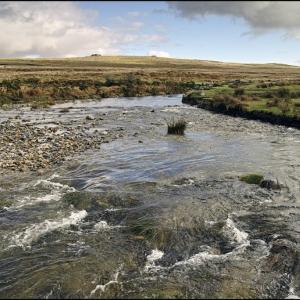 River Plym below Trowlesworthy Tor