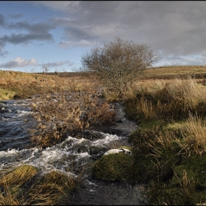 River Plym looking towards Hen Tor