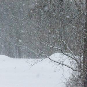 FZ200_winter_storm_gater_006_Medium_