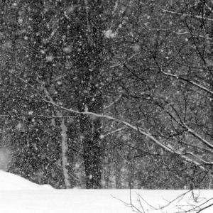 FZ200_winter_storm_gater_005_Medium_-001