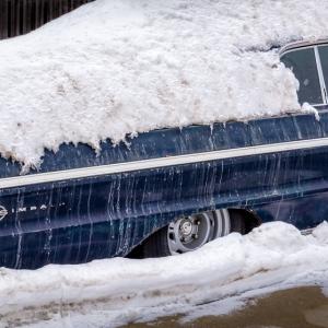 Winter-Feb2014-_16-of-21_