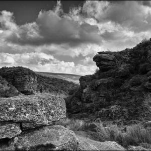 """A Dartmoor """"Gert"""""""